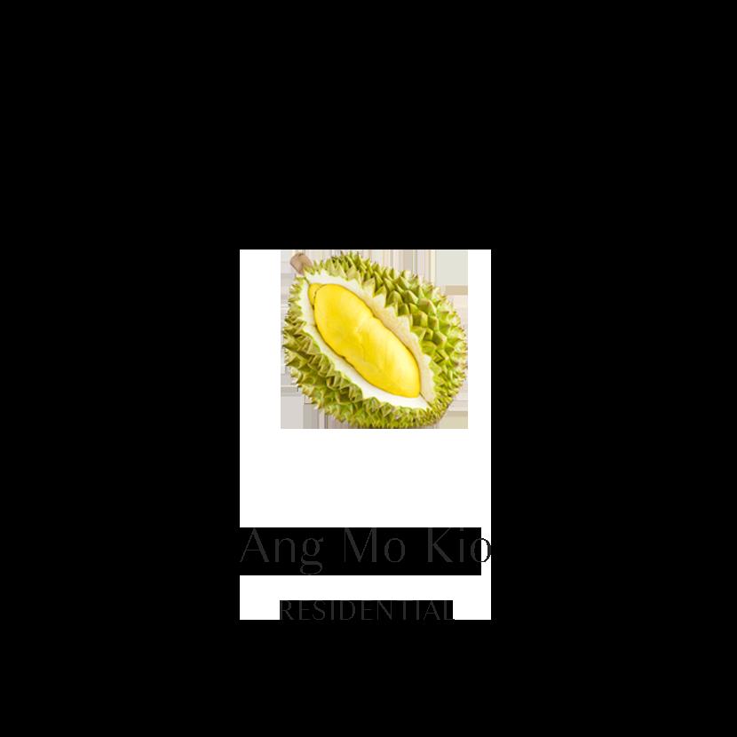 Ang Mo Kio