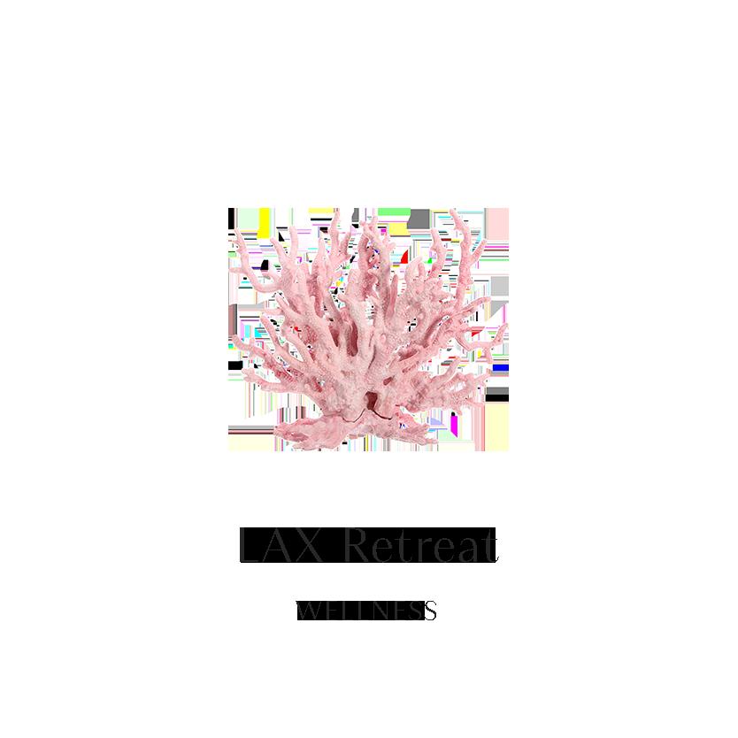LAX Retreat